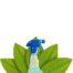 ekologiczne preparaty do czyszczenia