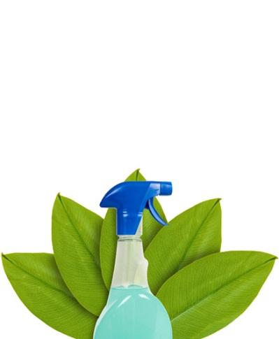 ekologiczna chemia - Aktualności